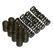 Valve Train (Valves, Springs, Retainers)